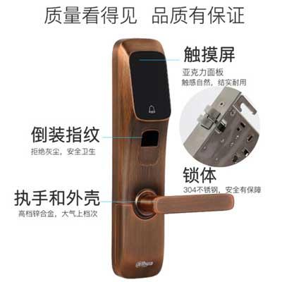 大华DH-ASL8112R防盗门锁电子锁智能锁指纹锁磁卡锁家用 智能指纹密码锁 科技银